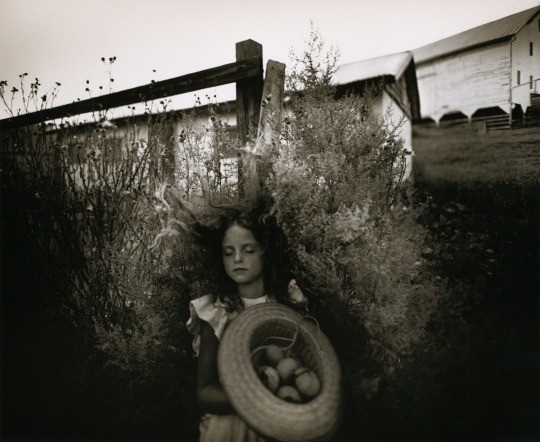 Sally-Mann-Yard-Eggs
