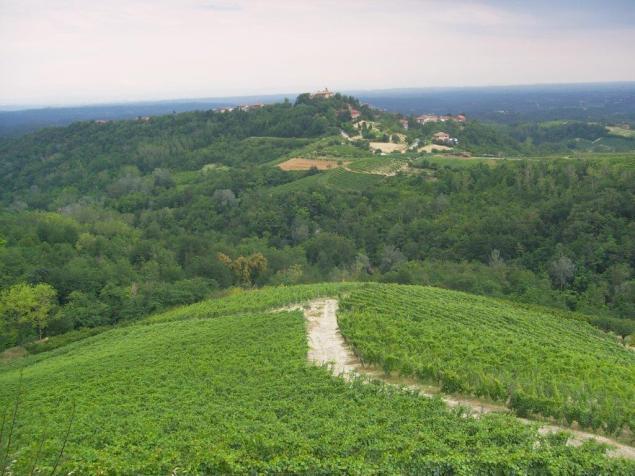 Vezzolano e Monferrato Astigiano (1)