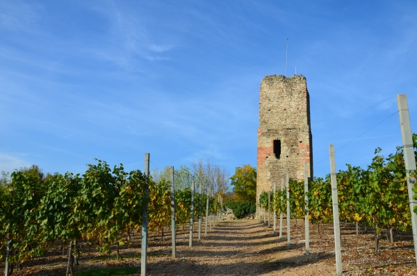 Torre_castelle_2