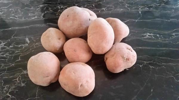 Patate (1)