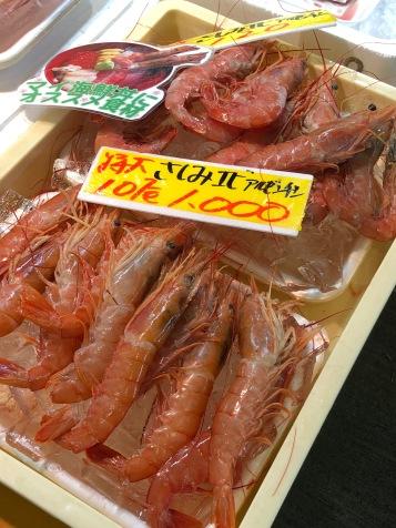 Giappone_Shiogama_Scaparone_IMG_3815