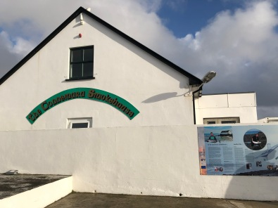 Alla scoperta del salmone irlandese