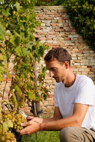 Matteo Bisiol